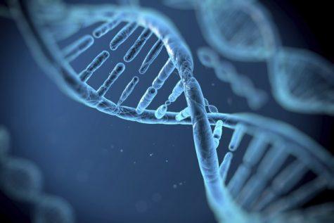 The Danger of Genetic Makeup