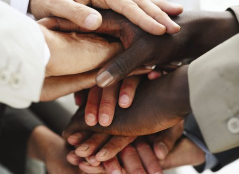 Diversity And The Fight Towards The Democratic Ideal